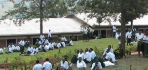 King David Academy